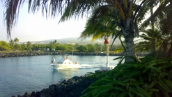Kona is world famous for sport fishing - dive, snorkel, fishing and fun all in Kailua-Kona